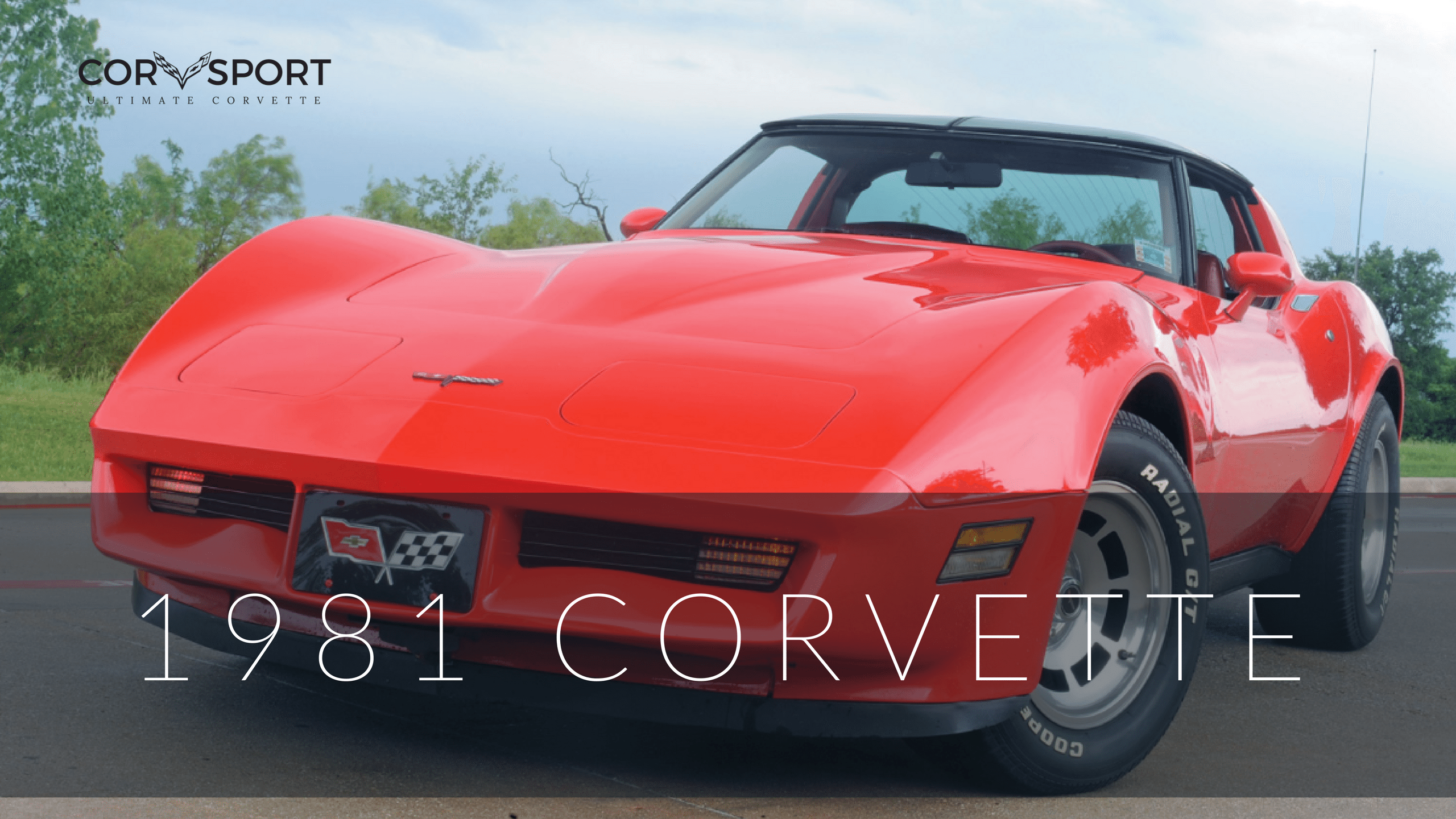 1981 C3 Corvette Ultimate Guide Overview Specs Vin Info Installing Electric Fan On A Performance More