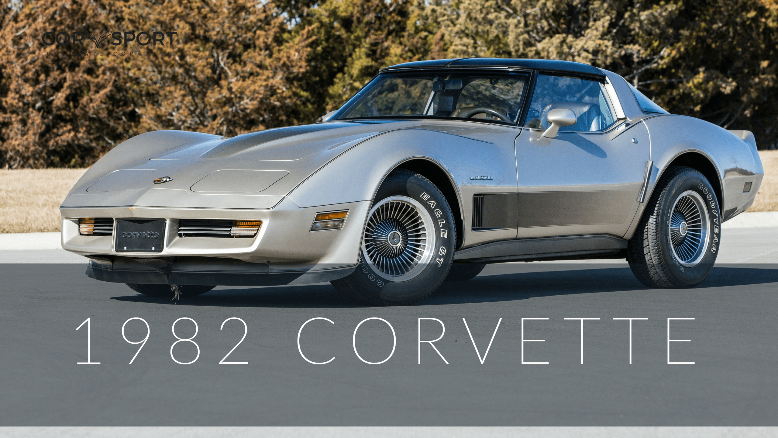 1982 C3 Corvette | Ultimate Guide (Overview, Specs, VIN Info