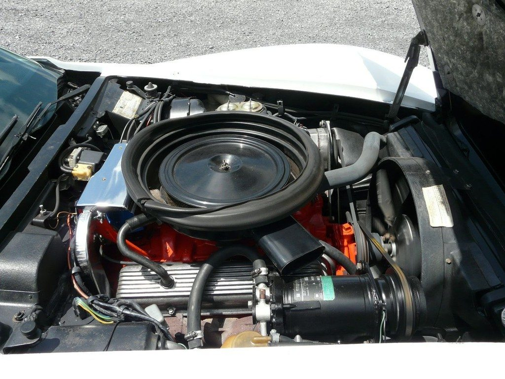 1973 Corvette engine