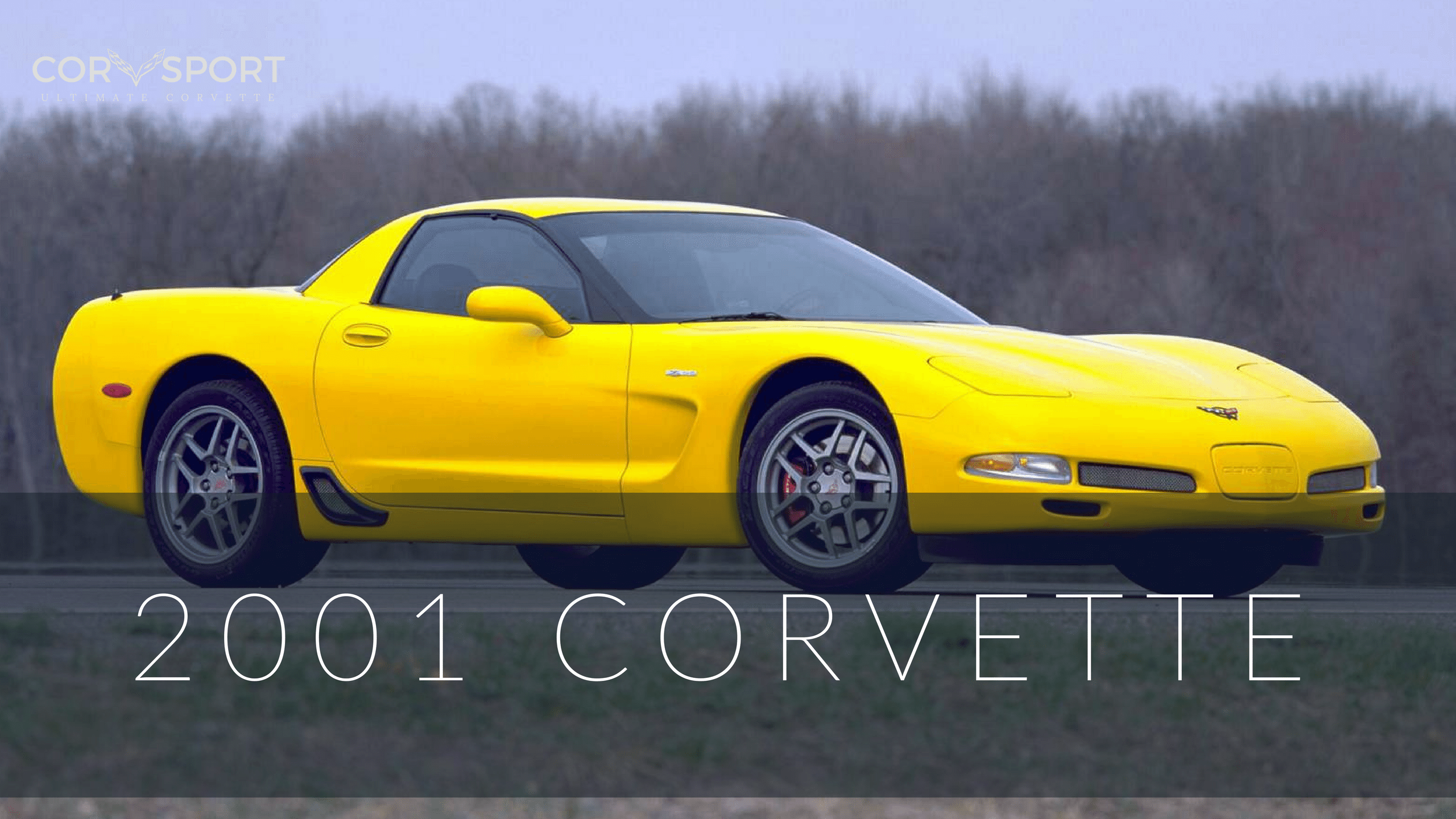 2001 C5 Corvette | Ultimate Guide (Overview, Specs, VIN Info