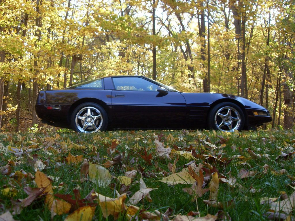 1992 C4 Corvette Ultimate Guide Overview Specs Vin Info 1991 Power Seat Wiring Diagram