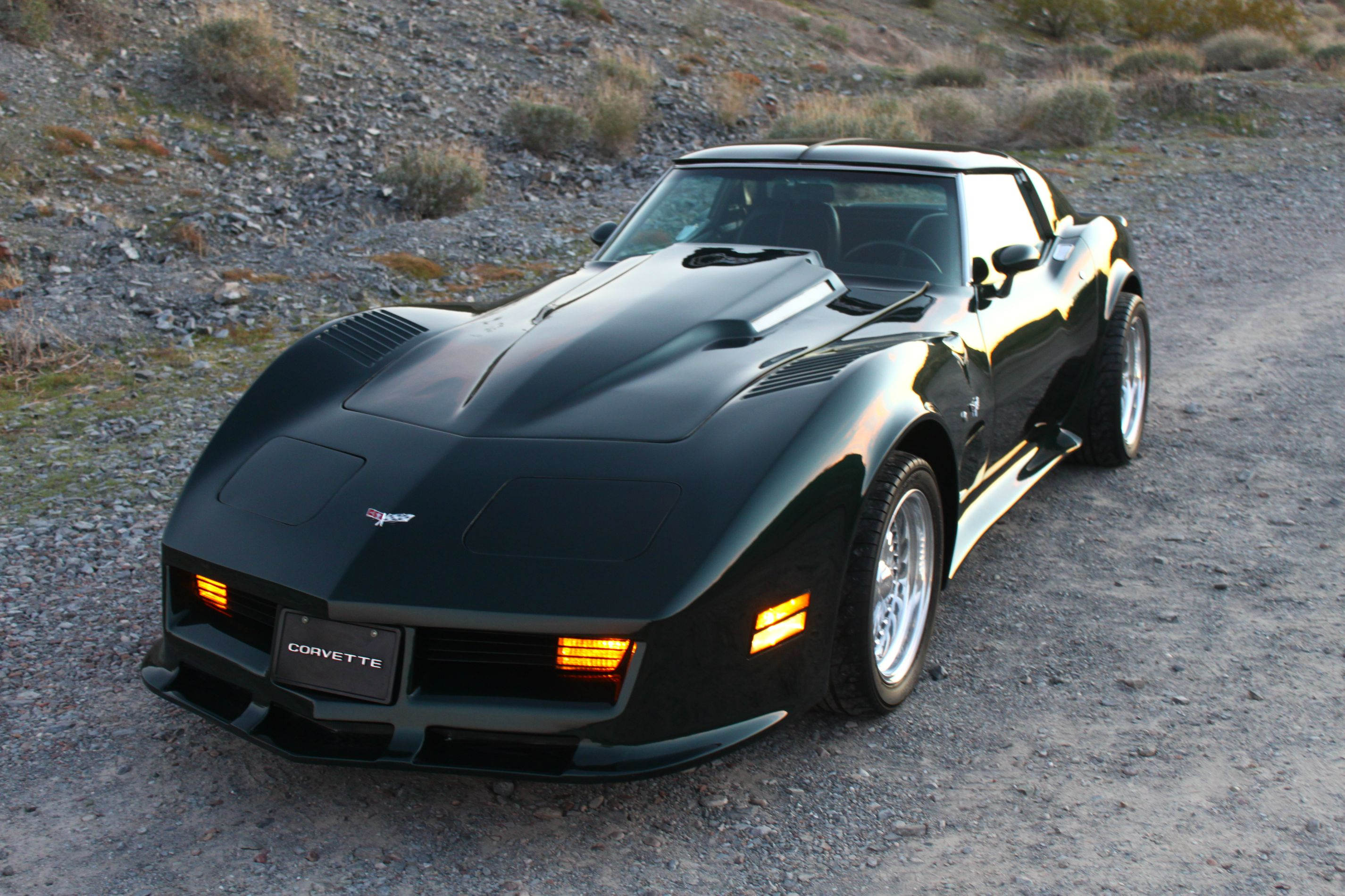 1977 corvette exterior interior colors