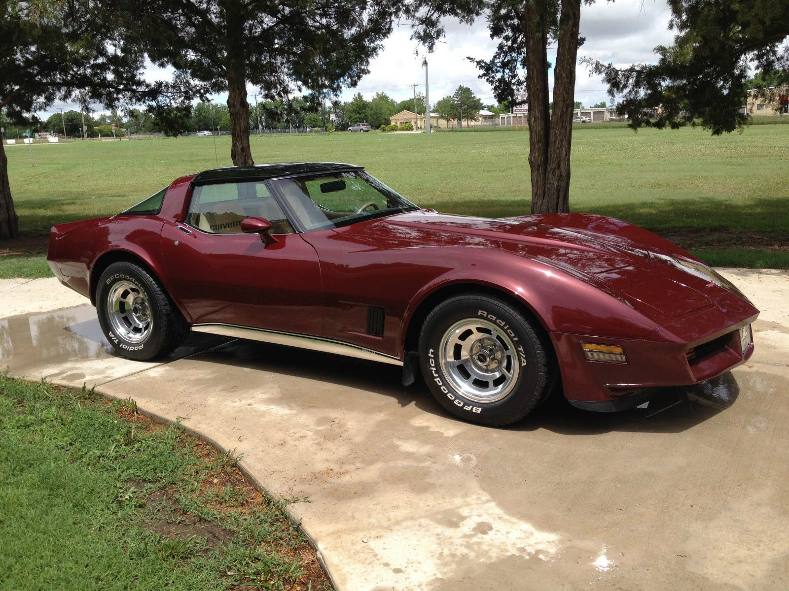 1961 Corvette For Sale >> 1981 C3 Corvette | Image Gallery & Pictures