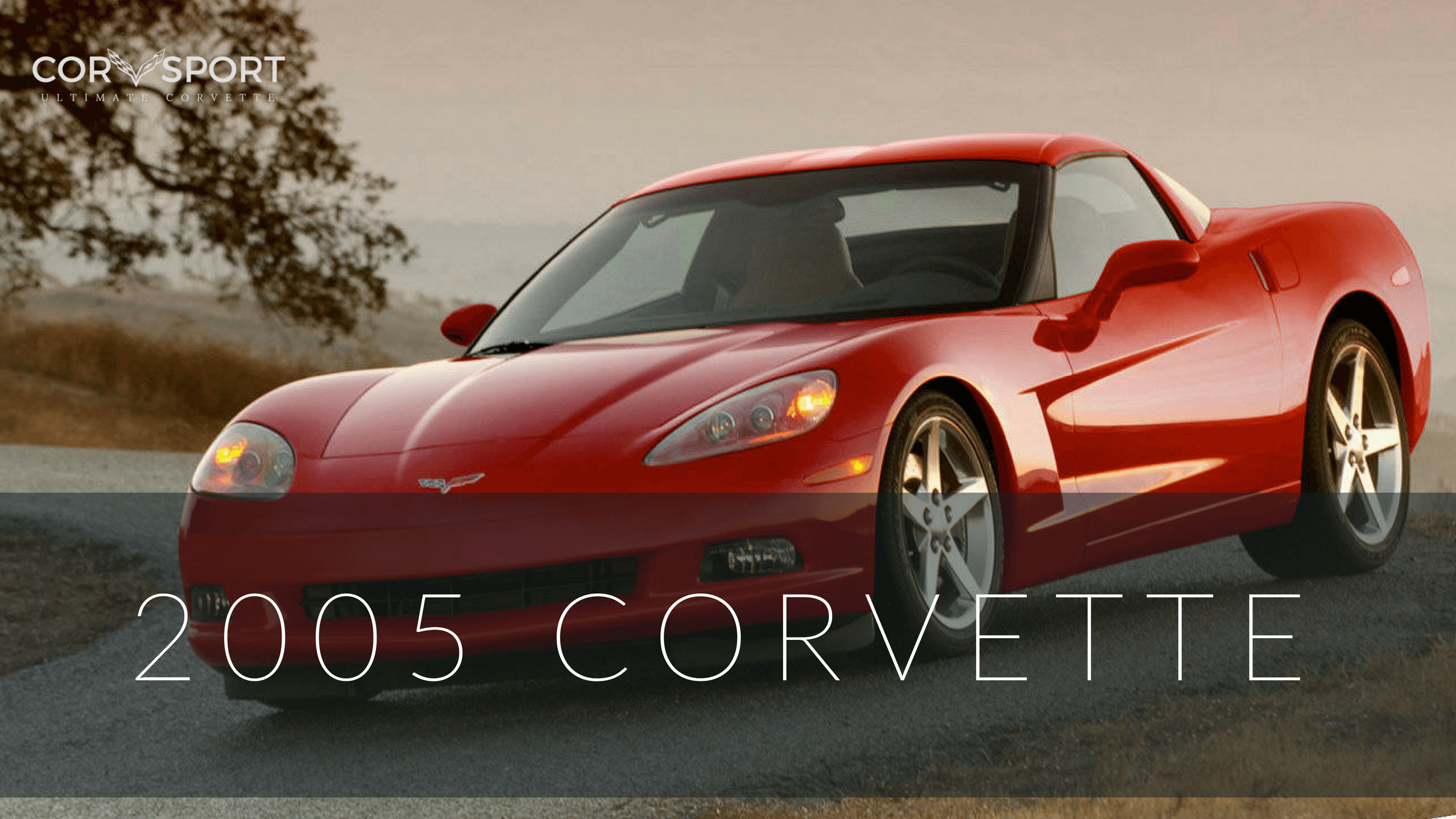 The 2005 Corvette Was Warmly Welcomed And Immediately Embraced By Both Fans Critics Alike When New Coupe Finally Made Its Earance In January